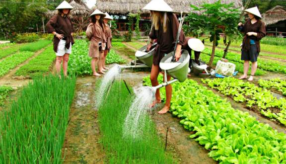 Opening Ceremony of Trà Quế Vegetable Village  experience and tourist attraction