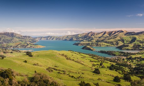 li NZ